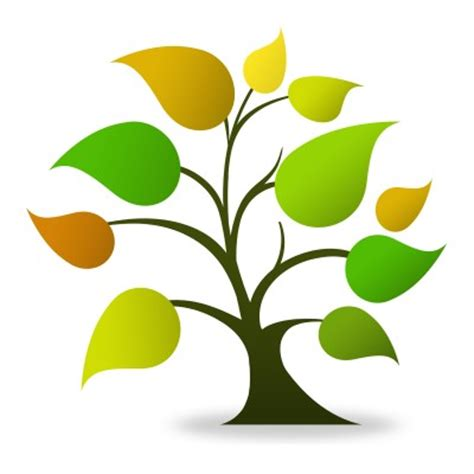 Value of trees in our life essay